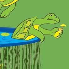 Turtle Sou...Spa
